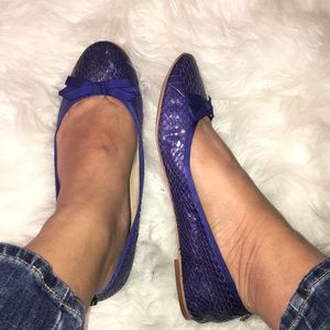 Sam Edelman snakeprint blue leather Milly flats